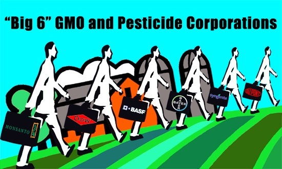 Big 6 GMO and Pesticide Corporations