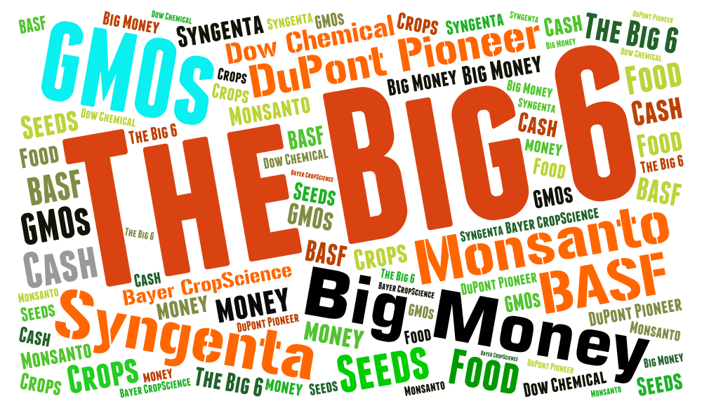 """Big 6"" pesticide and GMO companies"