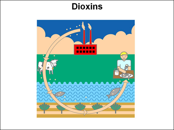 Dioxins graphic from National Cancer Institute website