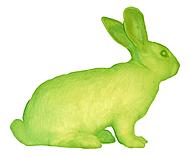 "Eduardo Kac's ""GFP Bunny"""