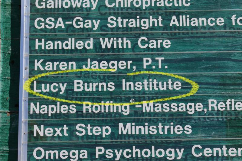 Lucy Burns Institute highlighted