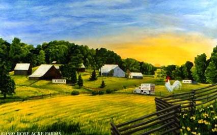 Rembrandt Farms