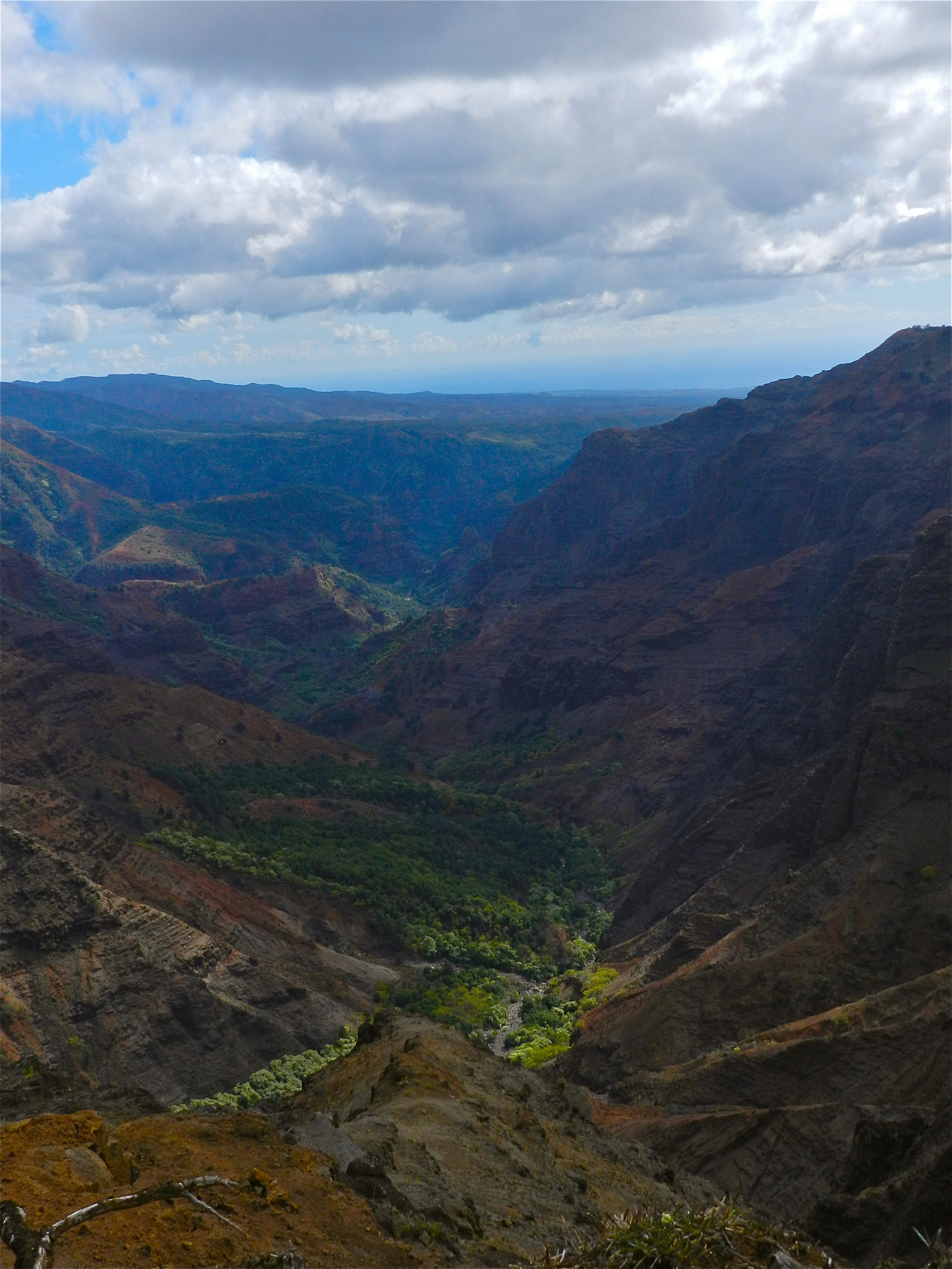 Waimea Canyon (Photo: Elsa Flores Almaraz)
