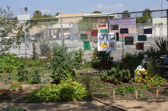 Westminster Avenue Elementary School's garden, with an open bag of Kellogg's Amend